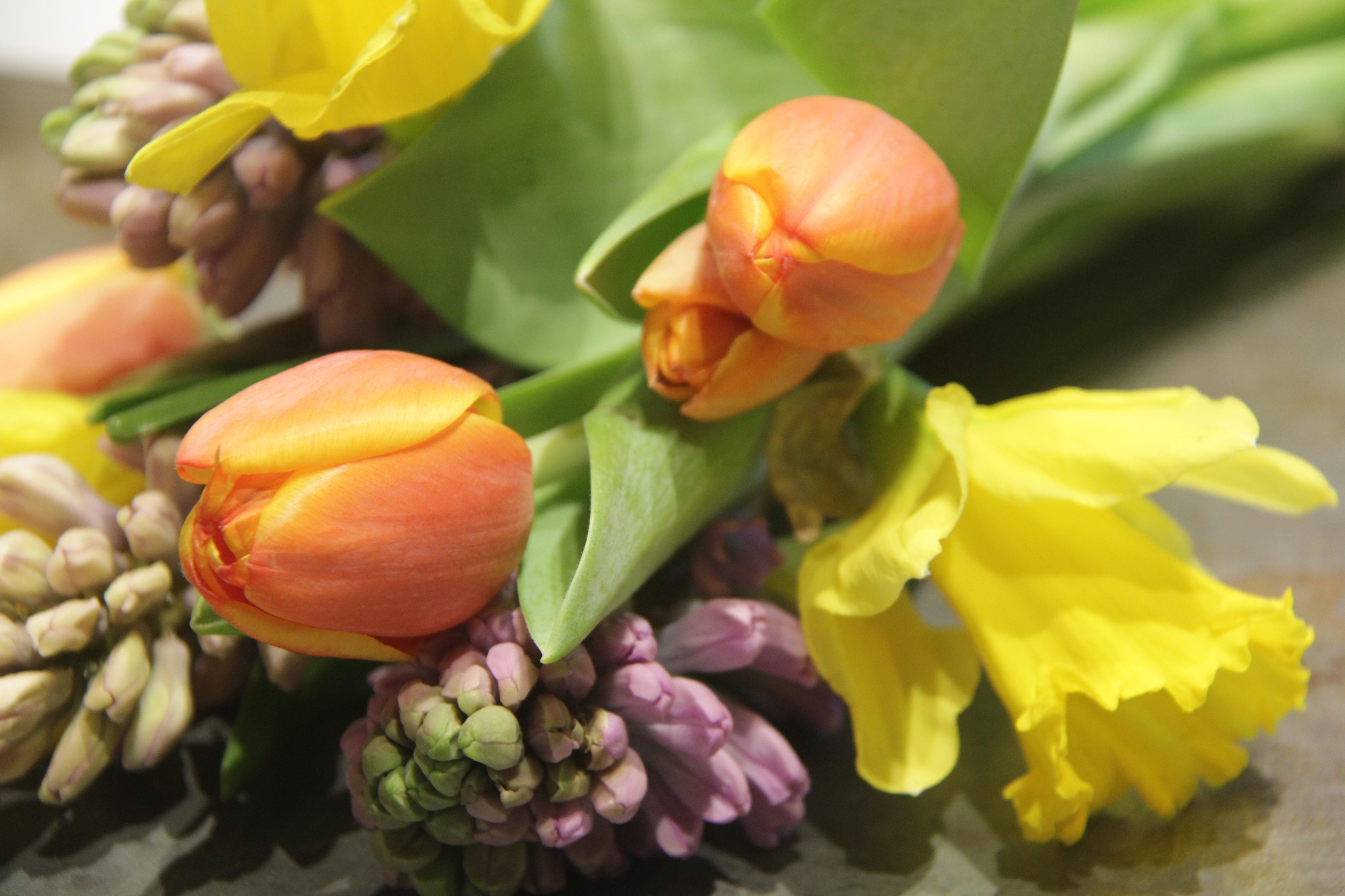 Fresh Cut Spring Flowers