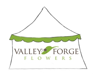 VFF TENT